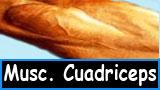 Ejercicios para muscular los cuadriceps