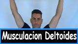 Musculacion deltoides