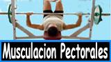 Ejercicios para muscular los pectorales