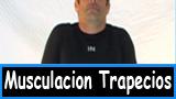 Hipertrofia o musculacion trapecios