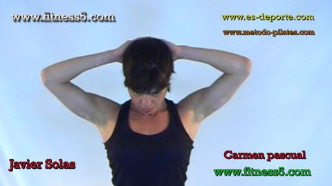 Flexibilidad del cuello por flexión forzada.